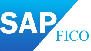 sap fico training in btm